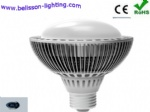 Par Lighting LED