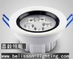 LED Ceiling Light Downlight