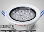 LED Ceiling Lights 9W