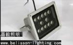 12*1W LED Flood Light