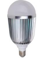 21W LED Bulb